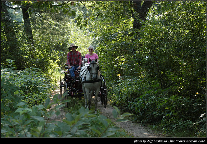 2l_horse_and_buggy_01