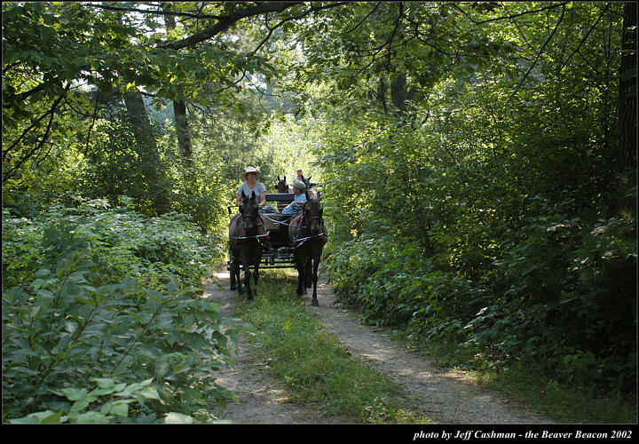 2l_horse_and_buggy_03