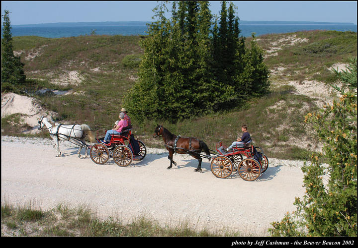 2l_horse_and_buggy_14