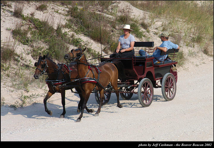 2l_horse_and_buggy_15