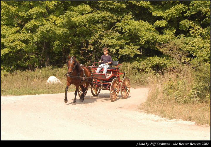 2l_horse_and_buggy_20