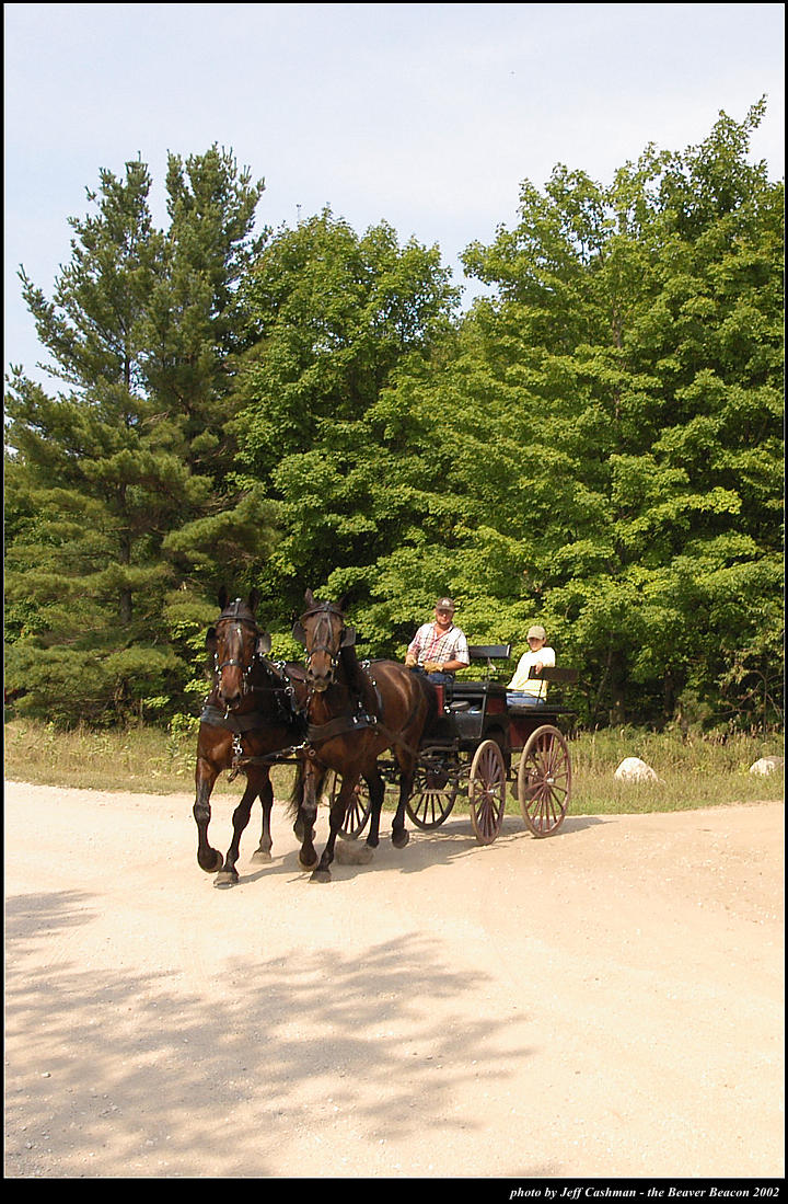 2p_horse_and_buggy_22