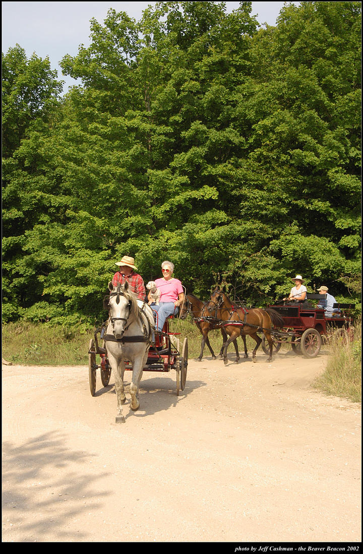 2p_horse_and_buggy_23