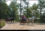 2l_horse_and_buggy_04.jpg