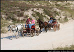 2l_horse_and_buggy_09.jpg