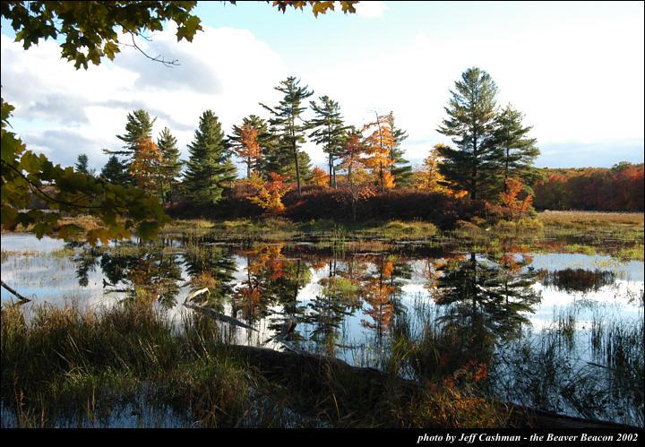 2beaver-island-fall-colors-jeff-cashman-13