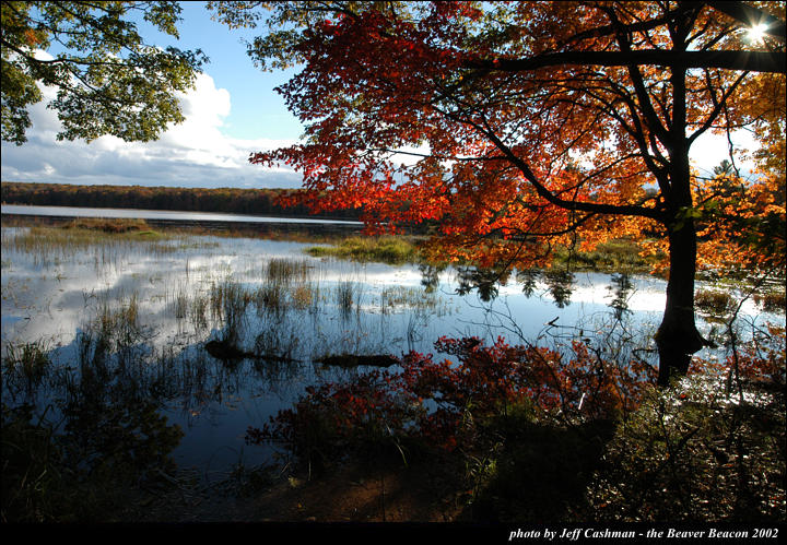 2beaver-island-fall-colors-jeff-cashman-16