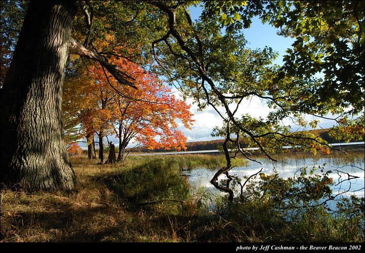 2beaver-island-fall-colors-jeff-cashman-17