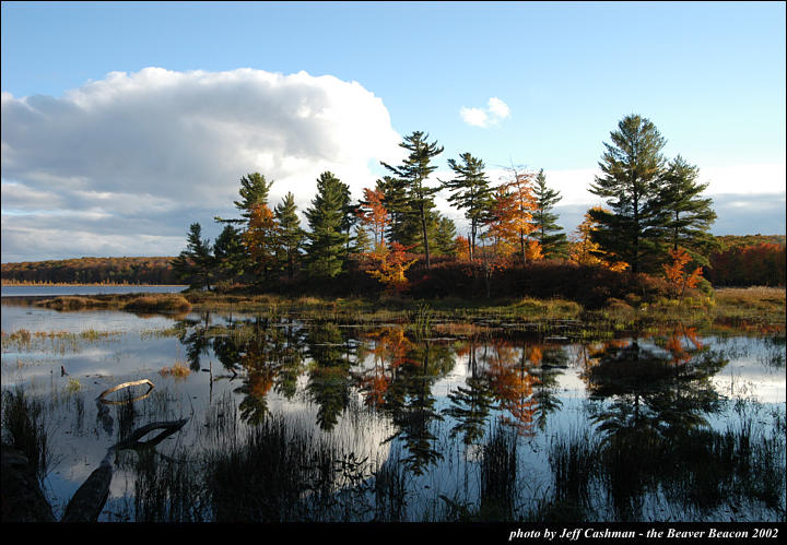 2beaver-island-fall-colors-jeff-cashman-2
