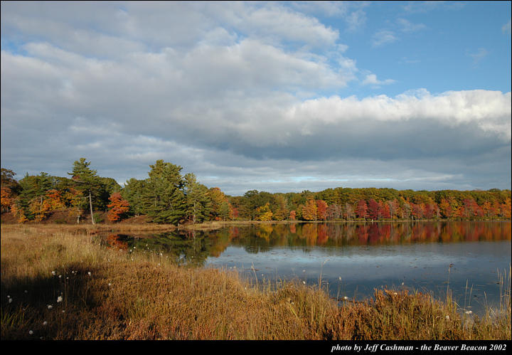 2beaver-island-fall-colors-jeff-cashman-3