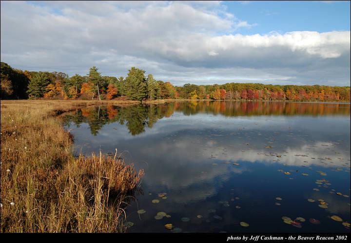 2beaver-island-fall-colors-jeff-cashman-4