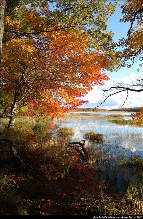 Fall Colors at Greene's Lake