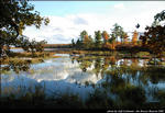 2beaver-island-fall-colors-jeff-cashman-11.jpg