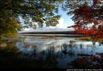 2beaver-island-fall-colors-jeff-cashman-12.jpg