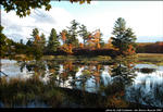 2beaver-island-fall-colors-jeff-cashman-13.jpg