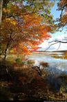 2beaver-island-fall-colors-jeff-cashman-14.jpg