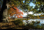 2beaver-island-fall-colors-jeff-cashman-17.jpg