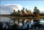 2beaver-island-fall-colors-jeff-cashman-2.jpg