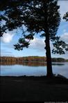 2beaver-island-fall-colors-jeff-cashman-25.jpg