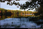 2beaver-island-fall-colors-jeff-cashman-27.jpg