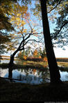2beaver-island-fall-colors-jeff-cashman-6.jpg