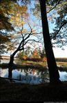 2beaver-island-fall-colors-jeff-cashman-6.jpg