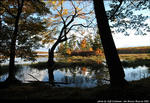2beaver-island-fall-colors-jeff-cashman-7.jpg