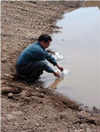 2Beaver_Beacon_Beaver_Island_Wildlife_Club_CMU_Walleye_Pond_4283.jpg