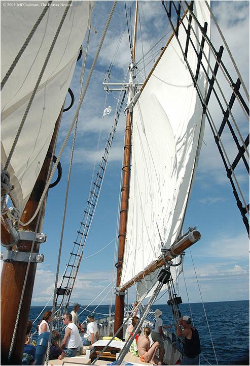 2Madeline-Beaver-Beacon-Main-Sail