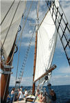 2Madeline-Beaver-Beacon-Main-Sail.jpg